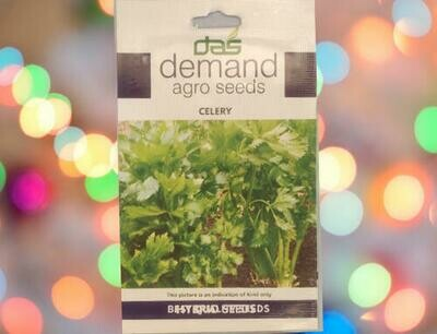 Demand Agro Celery