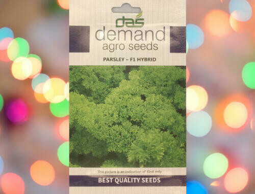 Demand Agro Parsley F1 Hybrid