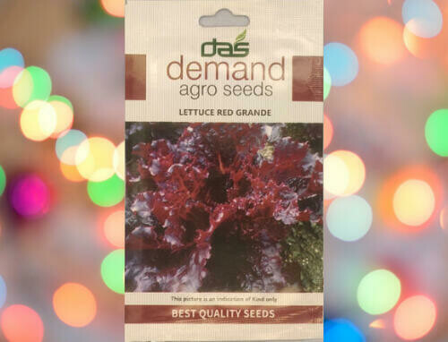 Demand Agro Lettuce Red Grande