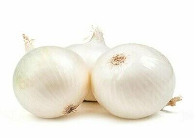 White Onion Seeds(10 Seeds)