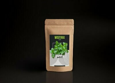 Wisitiria Seeds Mint