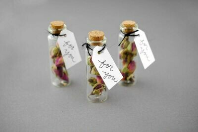 Vintage Seed Bottles (Return Gift)