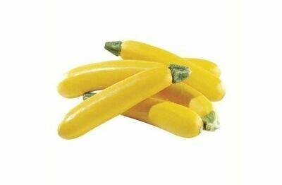 Zucchini Yellow Seeds (4 seeds)