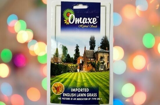 Omaxe Imported English Lawn Grass