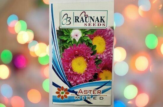 Raunak Seeds Aster Mixed