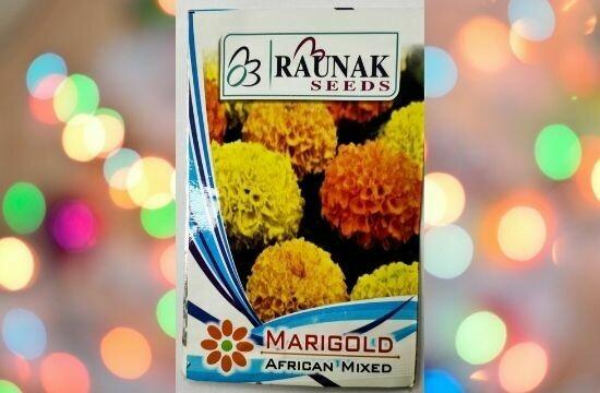 Raunak Seeds Marigold African Mixed