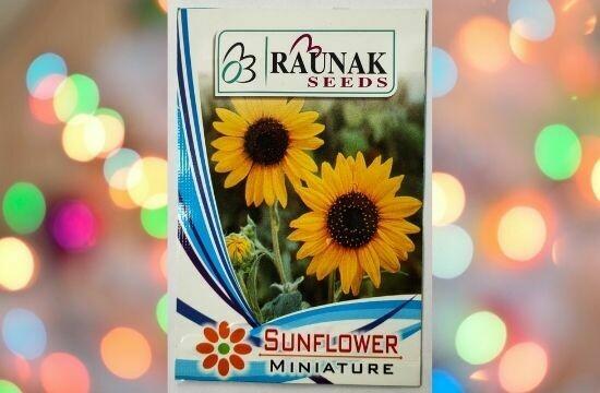 Raunak Seeds Sunflower Miniature