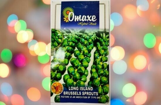 Omaxe Long Island Brussels Sprouts