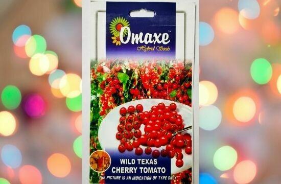Omaxe Wild Texas Cheery Tomato