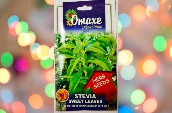 Omaxe Stevia Sweet Leaves