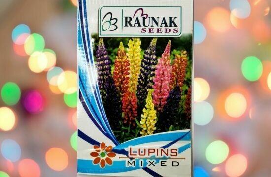 Raunak Seeds Lupins Mixed