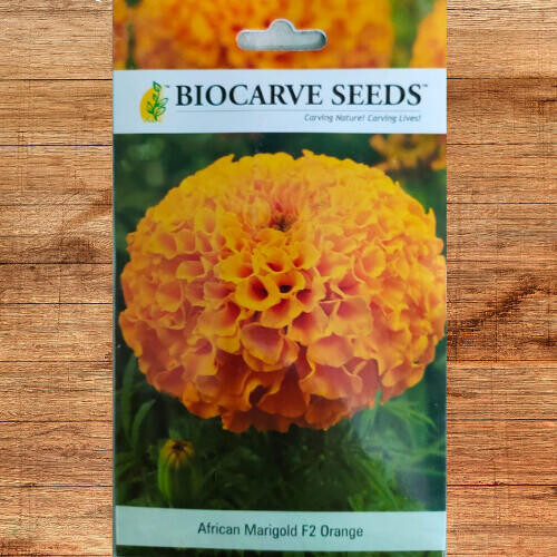Biocarve African Marigold F2 Orange