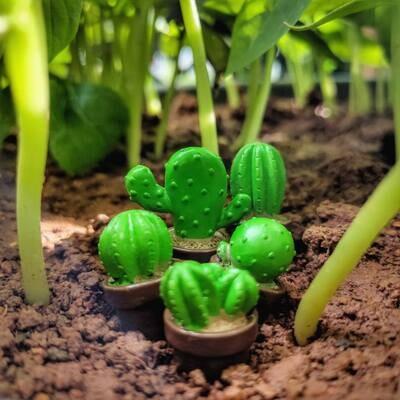 Miniature Cactus Assorted (Single Piece)