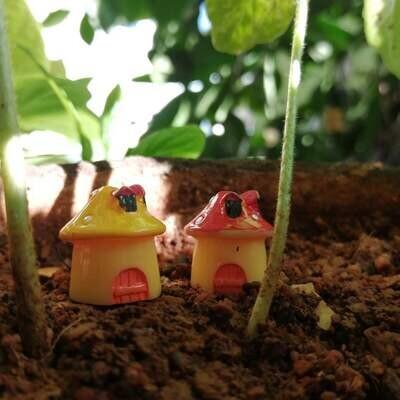 Miniature Mushroom House Assorted (Single Piece)