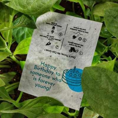 Seeds Card (Happy Birthday)