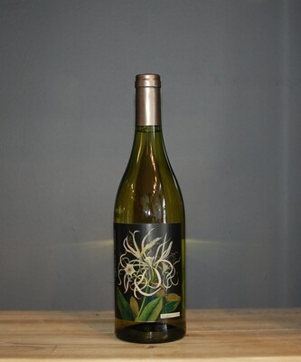 The Mary Delany Collection Chenin Blanc 2017