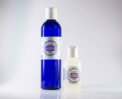 Seafoam Lavender Shampoo