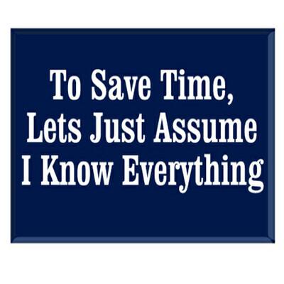Jailbird Save Time Magnet