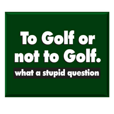 Jailbird To Golf or Not To Golf Magnet