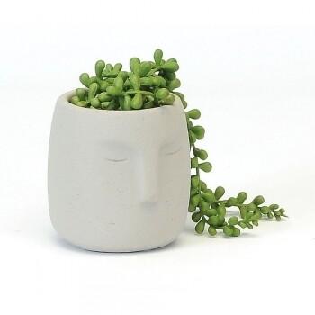 Grey Face Planter