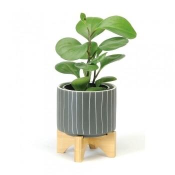 Dark Grey Striped Pot on Wooden Stand