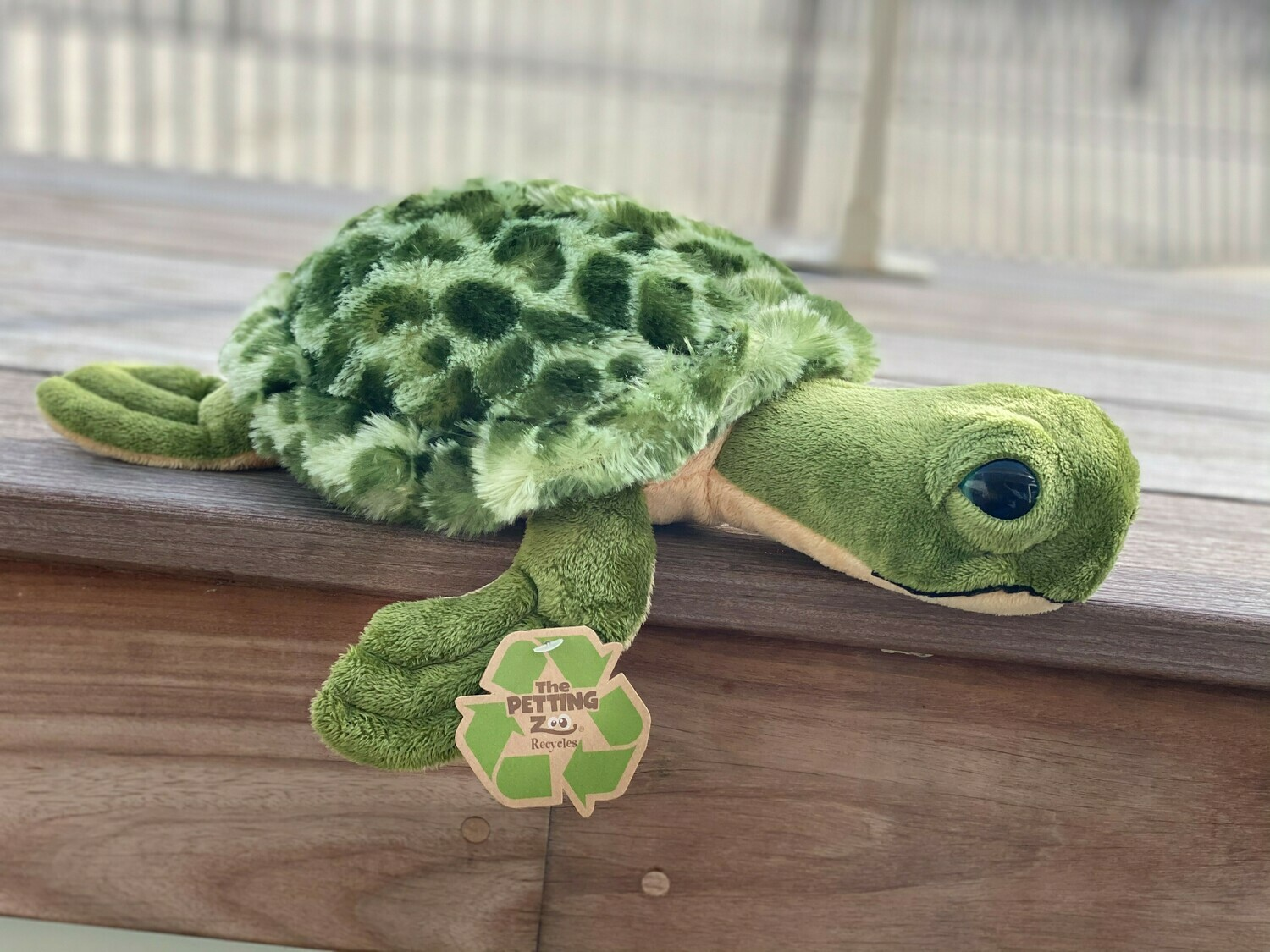Sea Turtle Plush - Small with Pattern Shell
