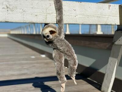 Hanging Sloth Plush