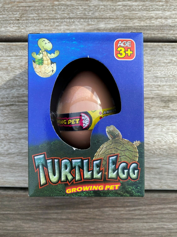Growing Pet - Turtle Egg