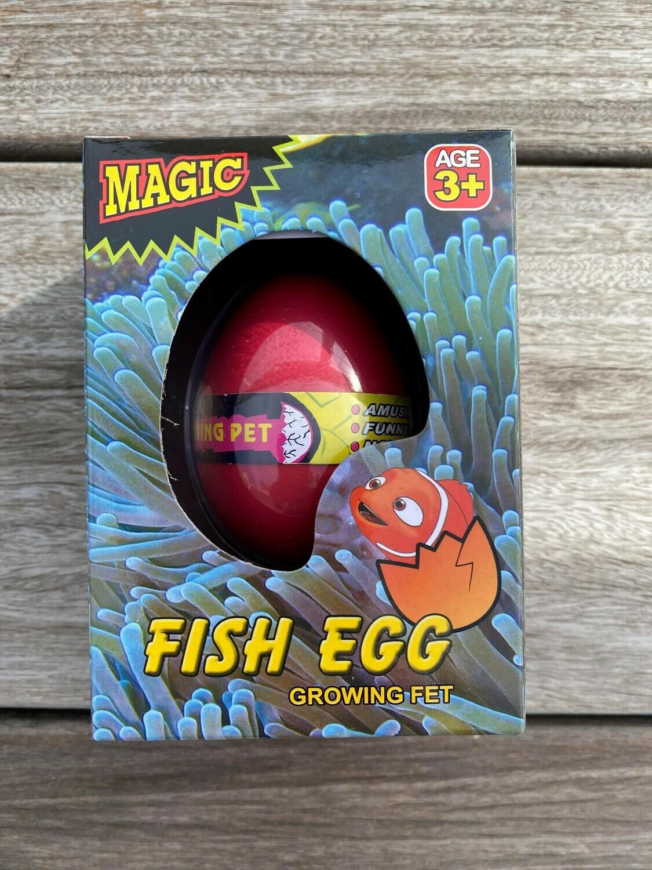 Growing Pet - Fish Egg