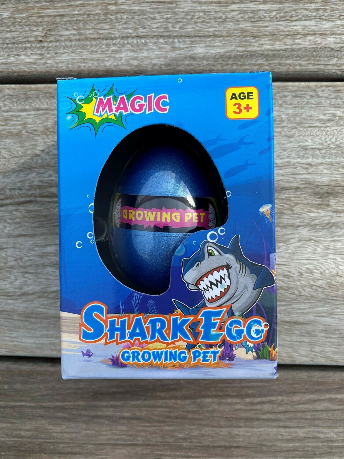 Growing Pet - Shark Egg