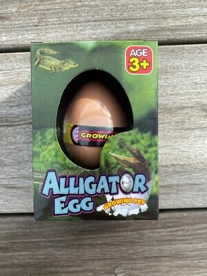 Growing Pet - Alligator Egg