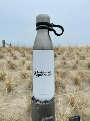 Jenkinson's Aquarium Stainless Steel Water Bottle