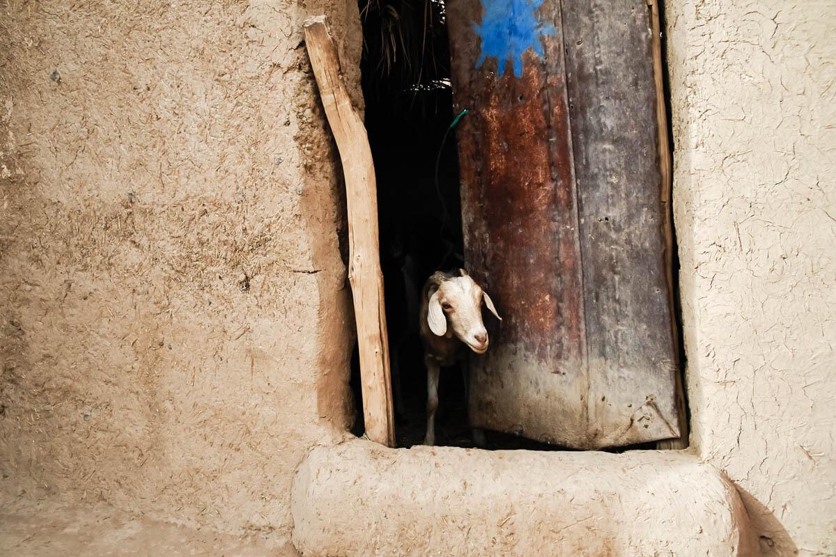 Le Maroc en Stop #5