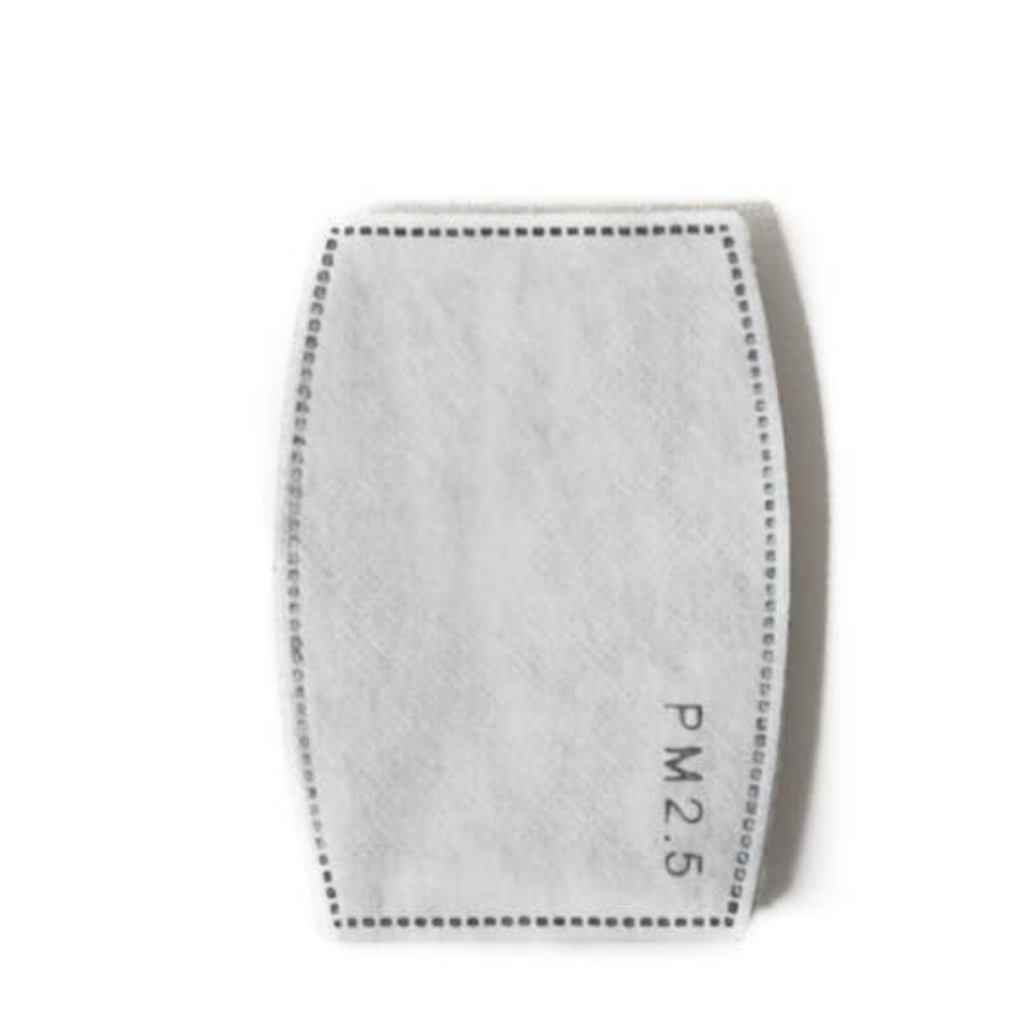 PM 2.5 Carbon Filter Pad - 6 Pack