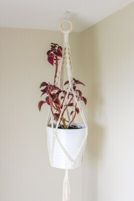 Macrame Plant Hanger -  Design Style A
