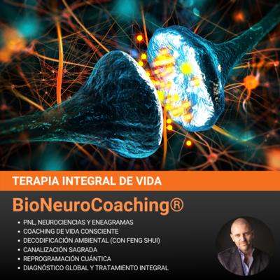 S2 - BioNeuroCoaching: Terapia Integral de Vida (Pack de 4 Sesiones)