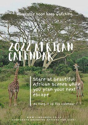 2022 Linda Ness calendars