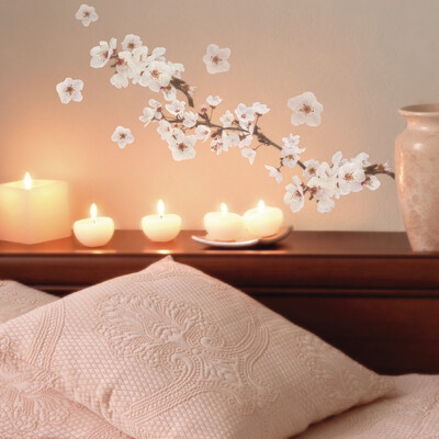 Photographic Blossom Self Adhesive Wall Sticker