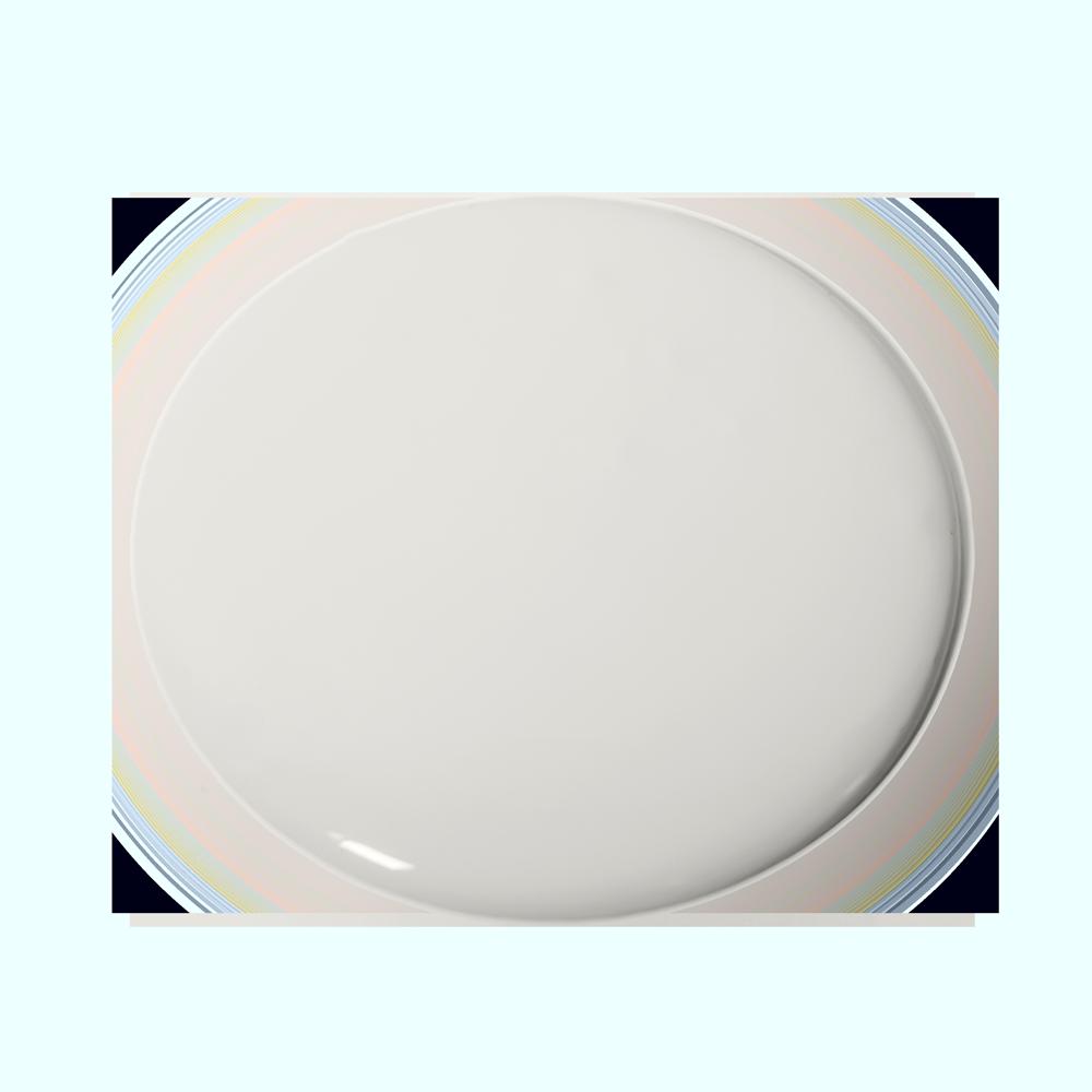 Light Grey 220 Essential Paint Colors