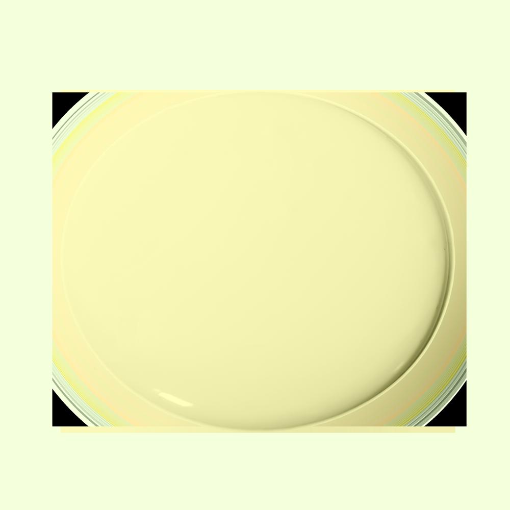 Lime Drop 255 Essential Paint Colors