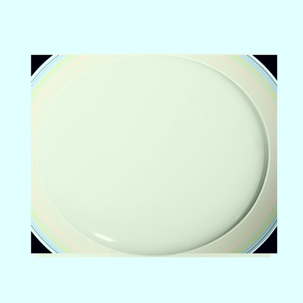 Shamrock 227 Essential Paint Colors