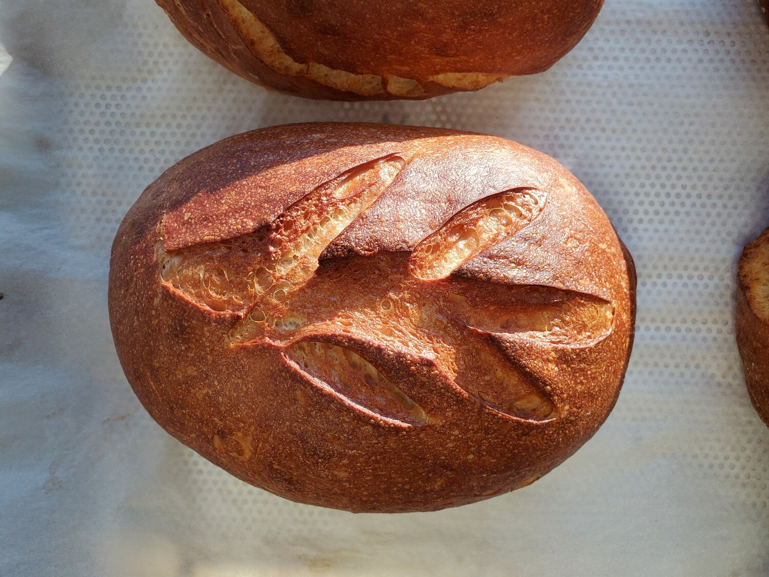 Hawaiian Sweet Sourdough