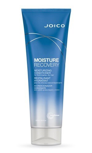 Moisture Recovery Conditioner 250ml