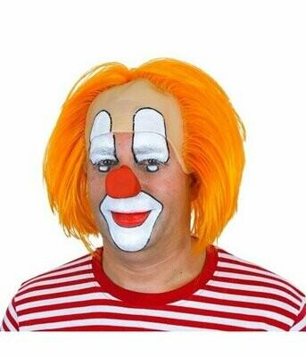 Pruik clown Bassie