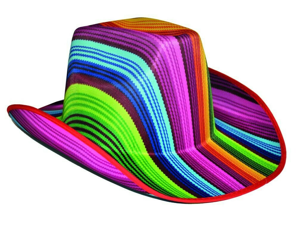 Regenboog hoed cowboy Rainbow