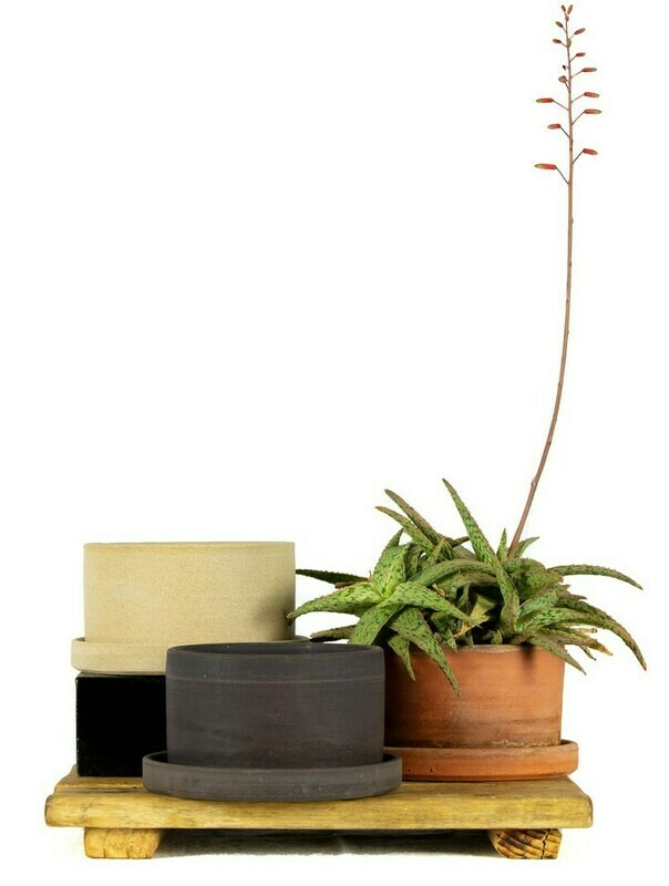 Planter + Tray - XLg