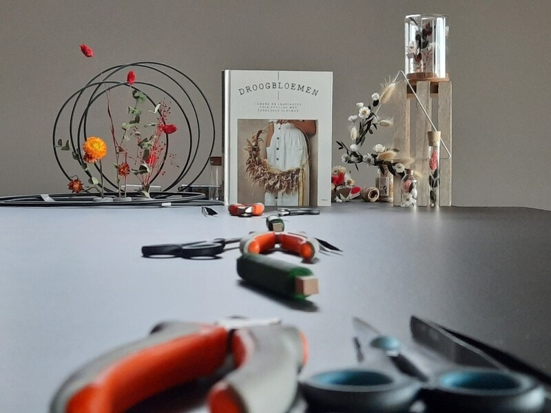 -Workshop- droogbloemen