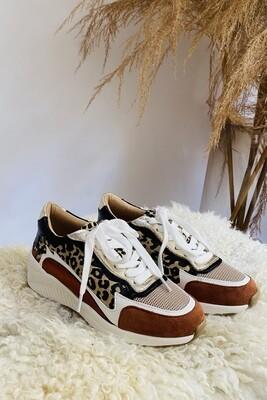 Sneaker Flame Leopard