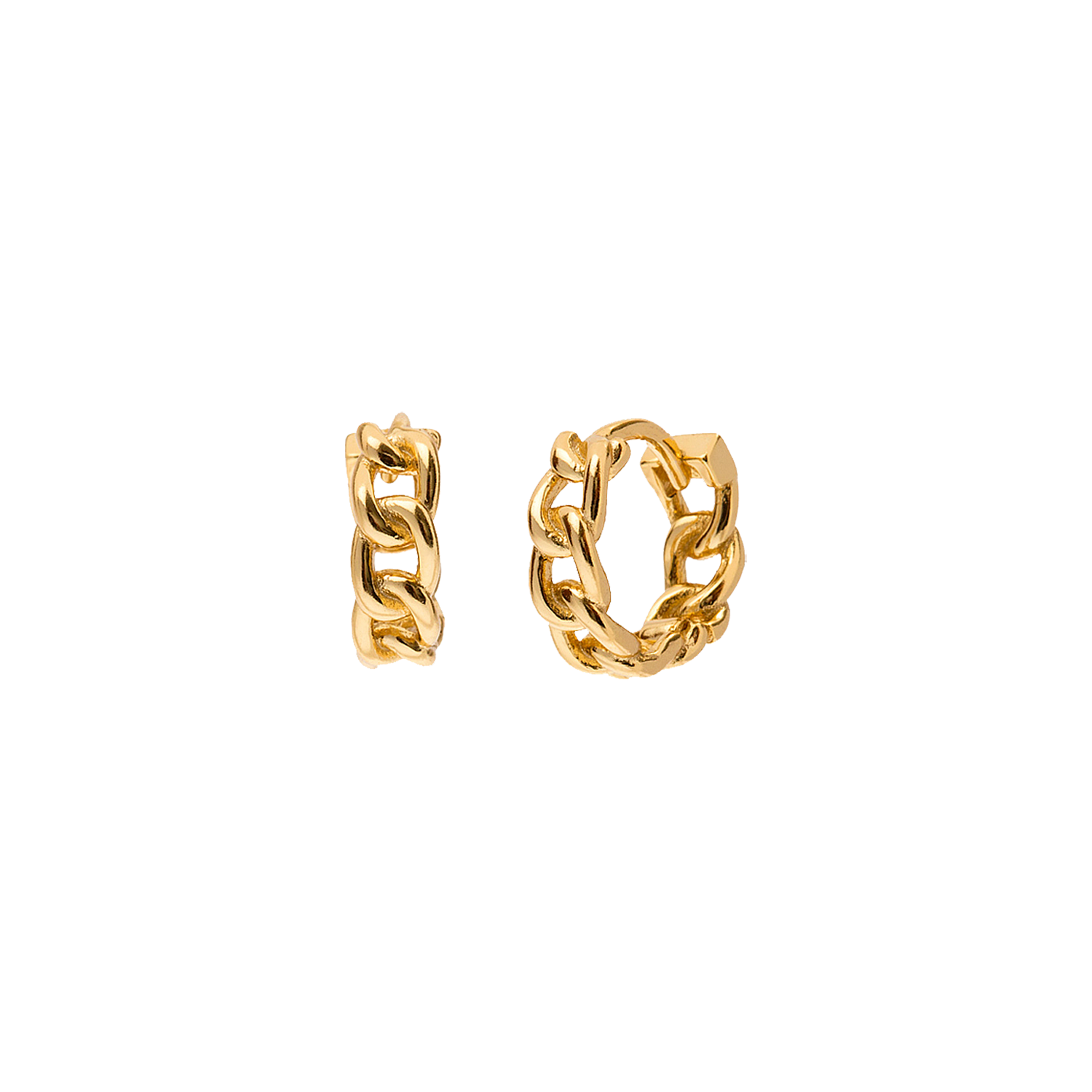 Iron Gold Earring