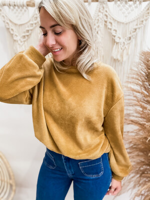 Sweater Teddy Camel